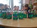 Rozmawiamy o żywiołach, a dzisiaj robiliśmy akwarium